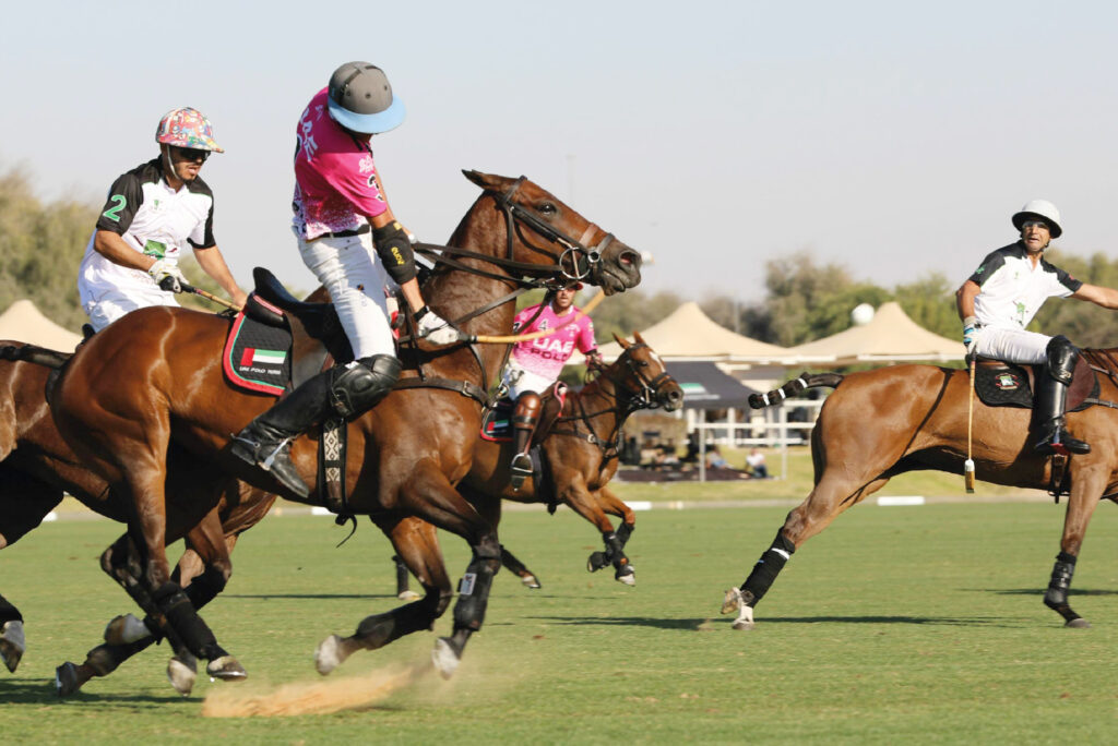 Dubai polo Equestrian club